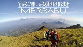getlinkyoutube.com-Merbabu Trail Running