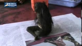 getlinkyoutube.com-Warga Batuhiu Digegerkan Penemuan Jenglot