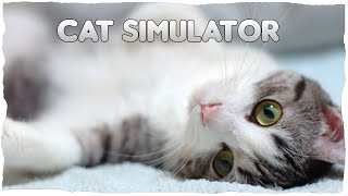 Expert in a fi pisica | Cat Simulator