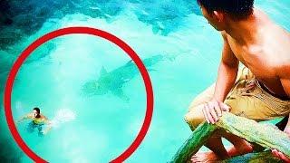 getlinkyoutube.com-★ 5 Attaques De Requin En Direct ! VIDEOS AUTHENTIQUES !