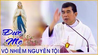 getlinkyoutube.com-Lễ Đức Mẹ Vô Nhiễm Nguyên Tội 08/12/2016