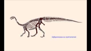 CAW Dinosaur Discussion Ep. 18: - Sefanaposaurus Zastronensis