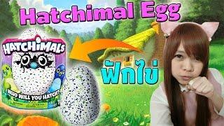 Hatchimal Egg : ฟักไข่มังกรน้อยขี้เซา