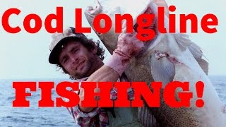 getlinkyoutube.com-Cod longline fishing with Georgie B