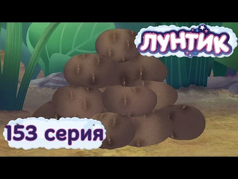 3 Сезон 153 серия. Картошка