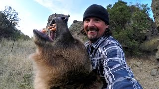GoPro: Man and Grizzly Bear - Rewriting History