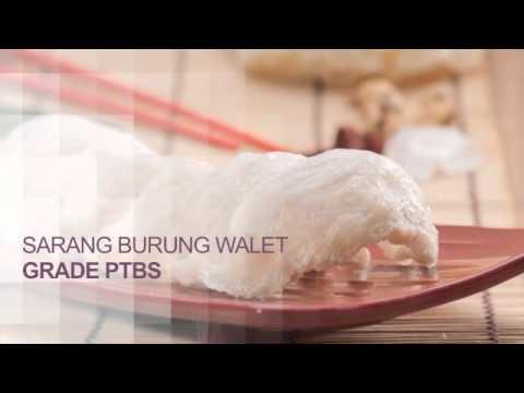 Sarang Burung Walet | Harga Sarang Burung Walet | Jual Sarang Burung Walet | Gloria Bird Nest