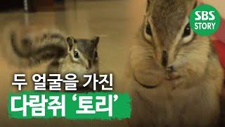 getlinkyoutube.com-TV 동물농장 468회_12