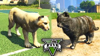 getlinkyoutube.com-GTA V PS4: Jogando com ONÇA e GATO! Se Transformando em ANIMAIS!