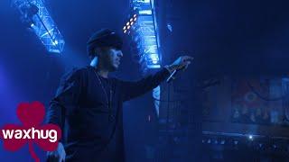 French Montana - Don't Panic Live performance - Waxhug Films