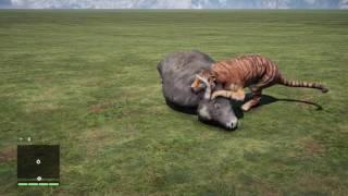 getlinkyoutube.com-Far Cry 4-Wild Animals Hunt Animation