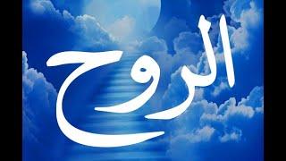 getlinkyoutube.com-عالم الروح وأسراره  - العارف بالله الشيخ رجب ديب 4
