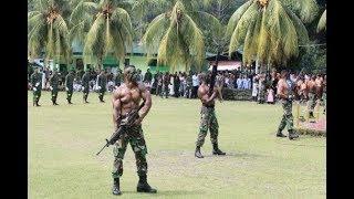 TNI AD Marah.. PM China Ingin Pasok 100 Ribu Senjata Api Ke Indonesia