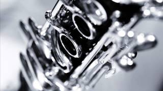 getlinkyoutube.com-Hora Clarinet Obedeanu