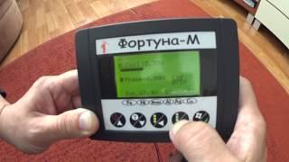 Металлодетектор Фортуна-М, калибровка по ферриту, реакция на разные цели.