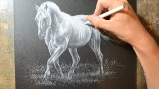 getlinkyoutube.com-Drawing a Horse with a White Colored Pencil Crayon