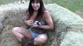 getlinkyoutube.com-Pet supplies expert 50 year old Farm Girl with mini micro piglets.