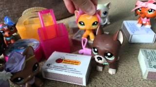 "getlinkyoutube.com-LPS : ""Zakręceni"" #8 Littlest Pet Shop !"