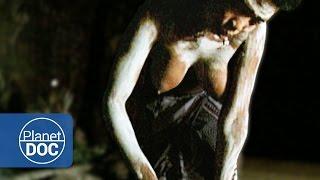 getlinkyoutube.com-Tribu Africana Zulú. Poligamia
