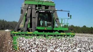 2009 Picking Cotton - DEJ Turner Farms