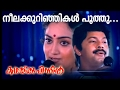Neelakkurinjikal Poothu... | Malayalam Movie | Kadhaykku Pinnil | Movie Song