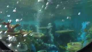getlinkyoutube.com-2014* Finding Nemo Submarine Voyage ride 1080p POV with Fresh Baked Disney!
