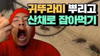 getlinkyoutube.com-[※혐주의] 철구+지혜 귀뚜라미 300마리 뿌리고 산채로 잡아먹기 (17.02.28-14) :: MukBang