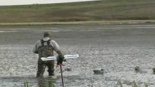 getlinkyoutube.com-Duck Hunting - Afternoon Mallard Shoot in a Transition Slough