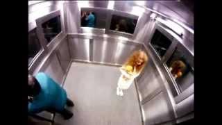getlinkyoutube.com-მოჩვენება ლიფტში   mochveneba liftshi   Ghost in lift