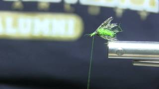 getlinkyoutube.com-Soft Hackle Caddis Emerger