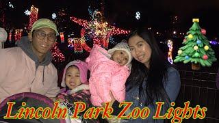 Vlogmas:Lincoln Park Zoo Lights 2017| Del Seoul Chicago
