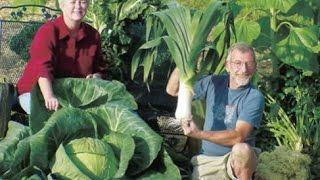 getlinkyoutube.com-The Secrets of Growing Giant Vegetables