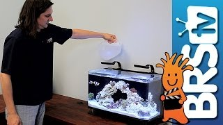 getlinkyoutube.com-How to set up a Nano 16 Gallon Reef Tank #nuvo16