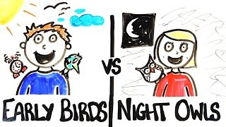 Ranoranioci & Noćne ptice