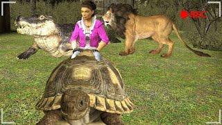 RIDABLE ANIMALS! - Gmod Crazy Zoo Animals Mod (Garry's Mod)