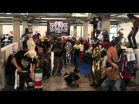 The Harlem Shake - Original MMA PROFESSIONAL Fighters (ELITE PRO SERIES EDITION)