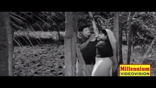 Malayalam Movie Song   Odippokum Kaatte   Porter Kunjali   Malayalam Film Song