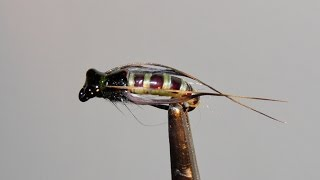 getlinkyoutube.com-,,CADDIS PUPA,, -  ЗИМНИЙ  вариант  SVA