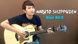 getlinkyoutube.com-(Ikimono Gakari) Blue Bird [Naruto Shippuden] - Nathan Fingerstyle | Guitar Cover