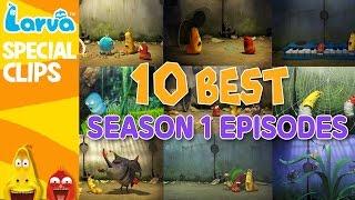 getlinkyoutube.com-[Official] Best Larva Episodes - Season 1 - Top 10
