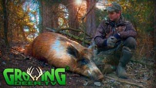 getlinkyoutube.com-Hunting Wild Hogs In Oklahoma (#325) @GrowingDeer.tv