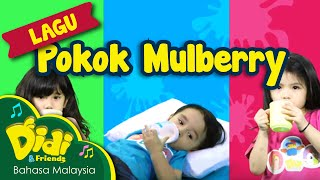 getlinkyoutube.com-Pokok Mulberry Didi & Friends ft Bella, Mika, Noah