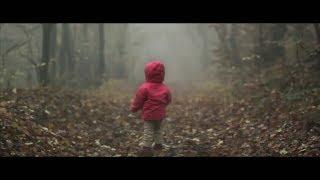 getlinkyoutube.com-Lost In Forest - Short Video