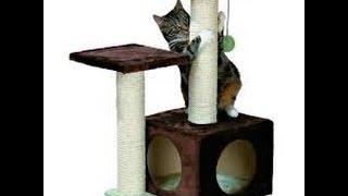getlinkyoutube.com-Casa para gatos ecologica