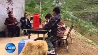 getlinkyoutube.com-Starke Kids | Galileo