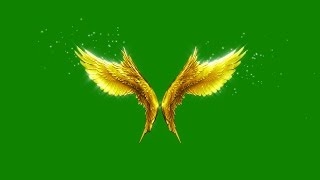 getlinkyoutube.com-Green Screen Angels Flapping Gold Wings Particles - Footage PixelBoom