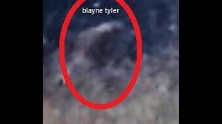 getlinkyoutube.com-Old Silver Top Sasquatch Bigfoot Caught In Open