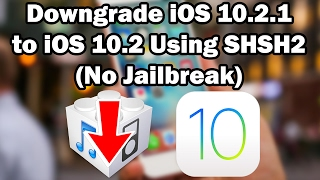 How to Downgrade iOS 10.2.1 to iOS 10.2 Unsigned Using Prometheus on iPhone, iPod touch, or iPad