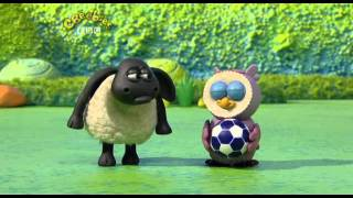 Timmy Time Season 1 Episode 10 - Timmy Plays Ball width=