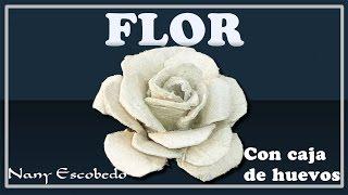 getlinkyoutube.com-FLOR CON CAJA DE HUEVO